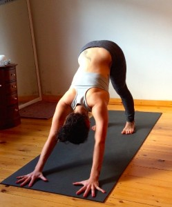 Adho Mukha Svanasana - Downward facing dog posture